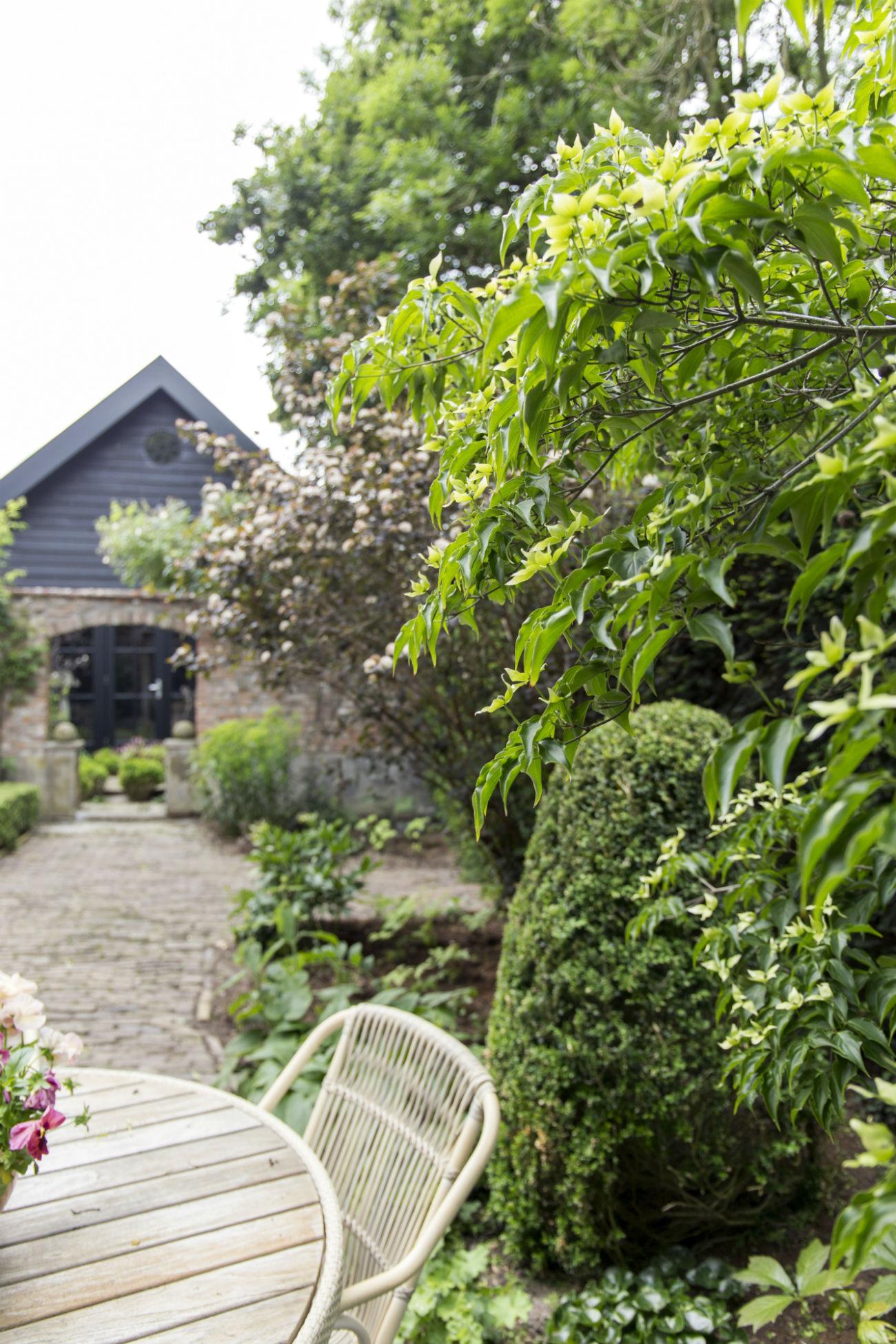 Tuinontwerp-tuinontwerper-Toffe Tuinen-tuinaanleg-tuinadvies-tuinarchitect
