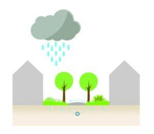 Klimaatadaptieve tuin-hittestress-wateroverlast-waterafvoer tuin-koele tuin-Toffe Tuinen-Laura Knoops