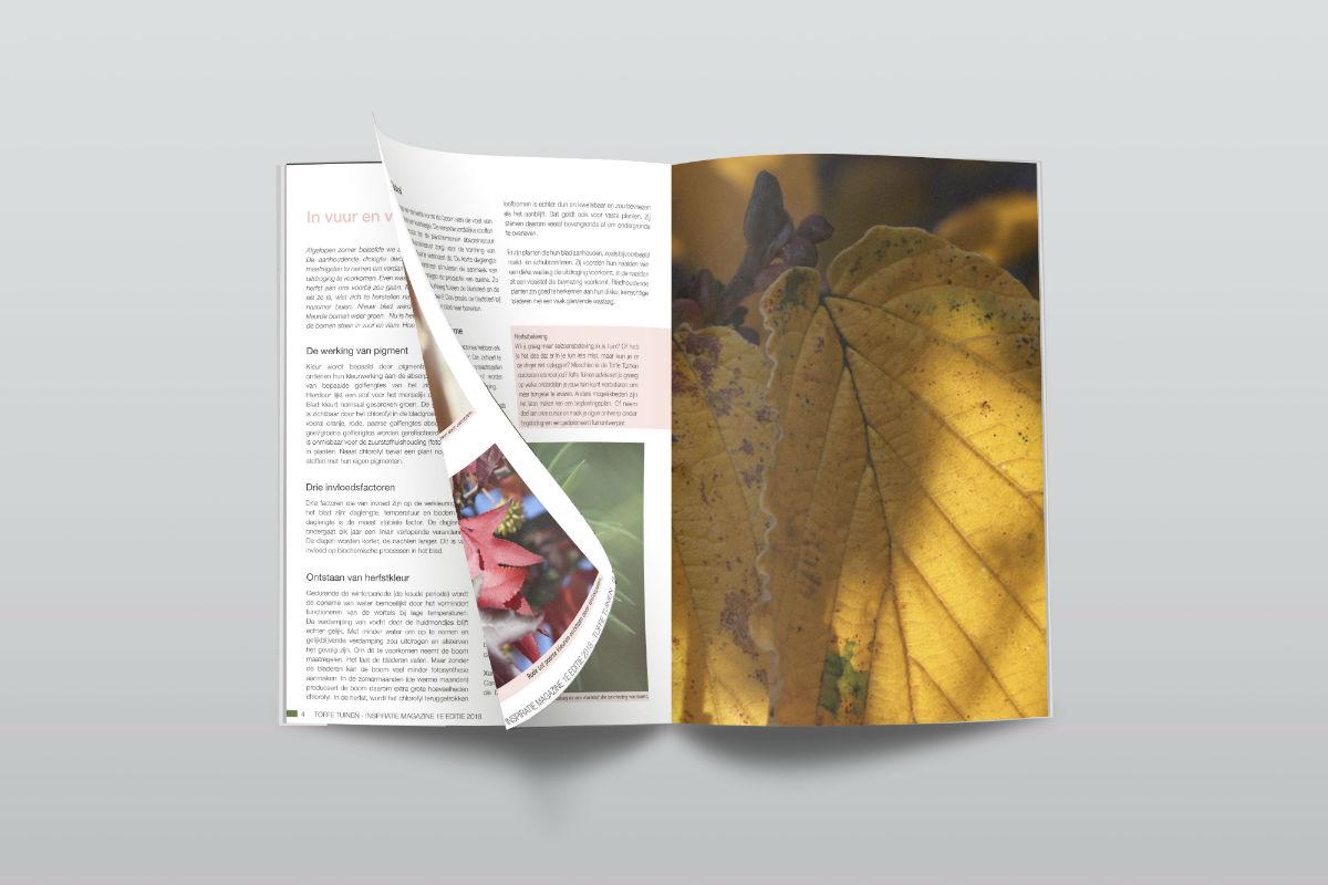 tuinontwerp-tuinadvies-tuinarchitect-tuinaanleg-hovenier-tuinontwerper-Toffe Tuinen-Laura Knoops-tuin magazine-tuin tijdschrift- tuininspiratie-tuinideëen