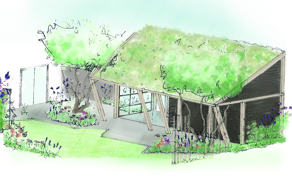 tuinontwerp-tuinadvies-tuinarchitect-tuinaanleg-hovenier-tuinontwerper-Toffe Tuinen-Laura Knoops-Stadstuin-levende tuin-gezinstuin-Vierlingsbeek