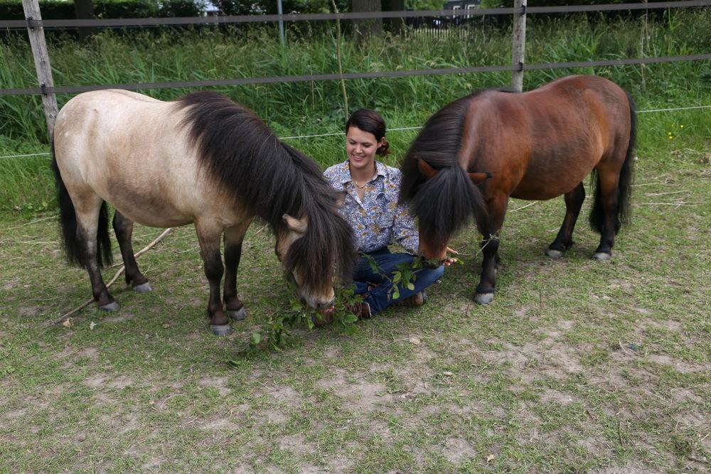 Paardentuinen-kennismaken